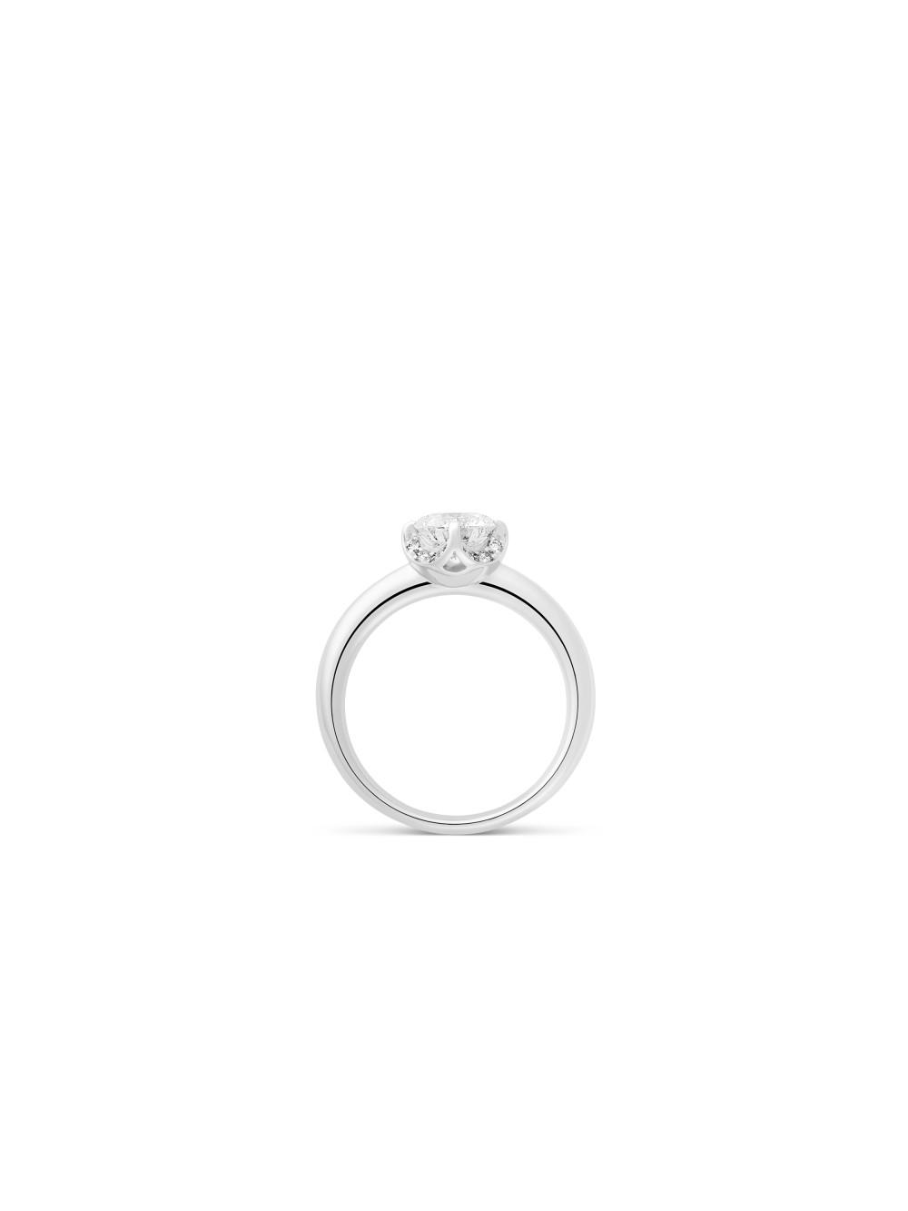 Ring Splendora 02