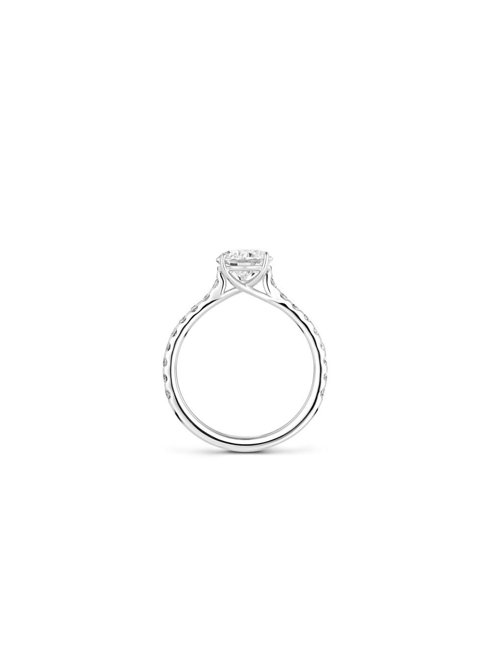 Ring One Sunray 02