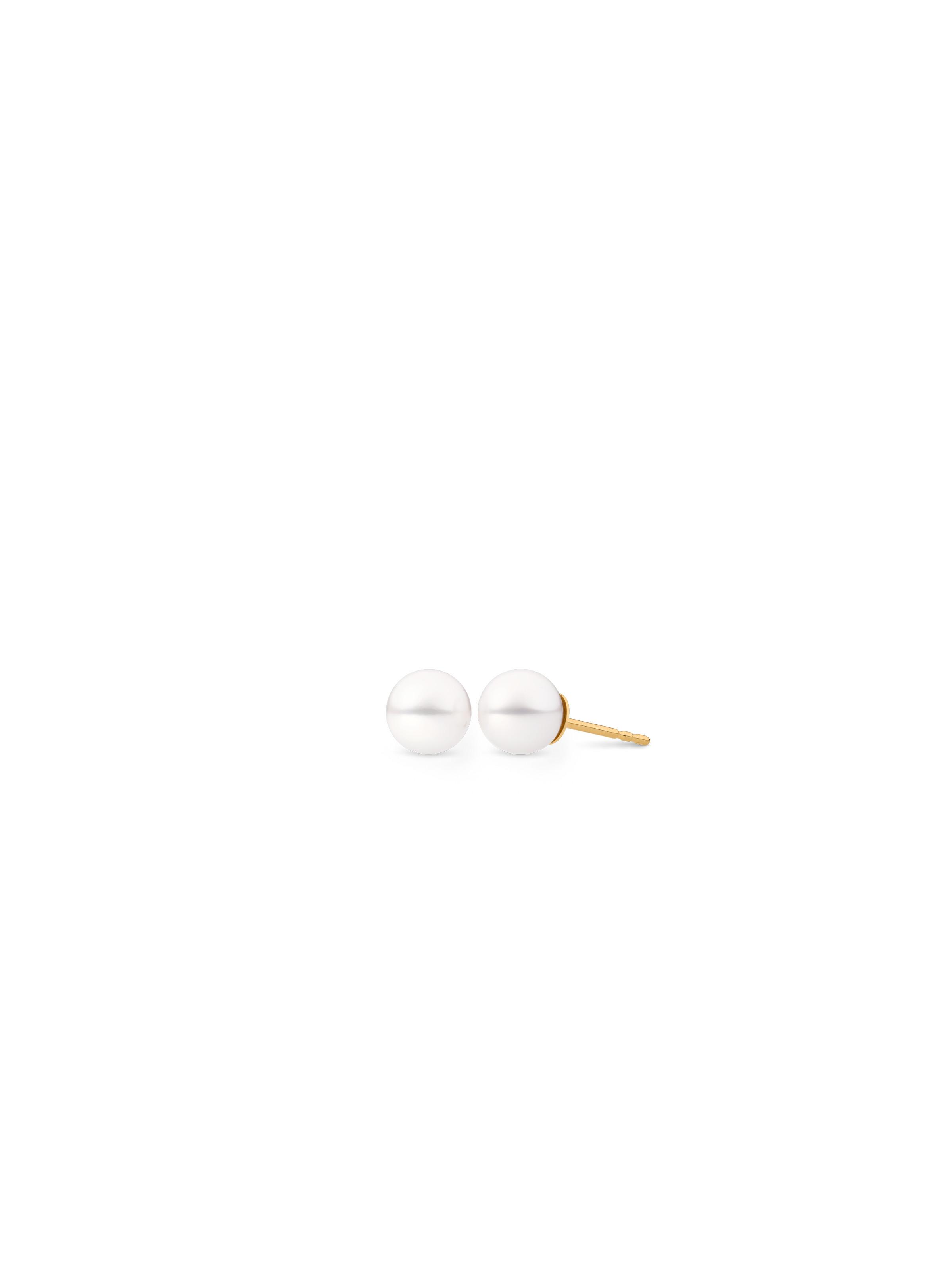 Basics ear studs