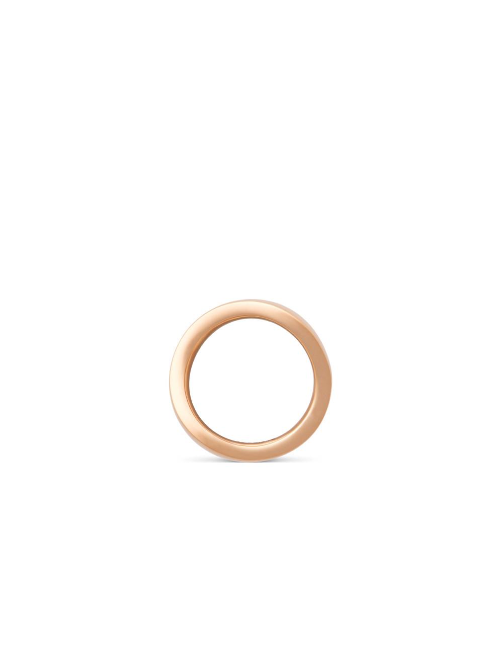 Ring Voyage 02