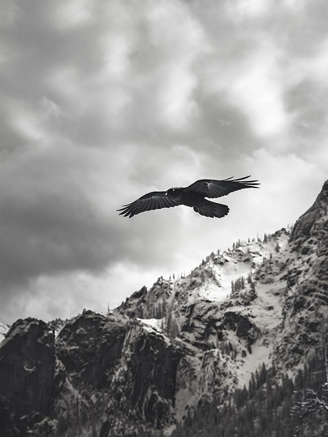 Frei und unabhängig.<br>Chopard Alpine Eagle